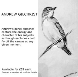 Andrew Gilchrist