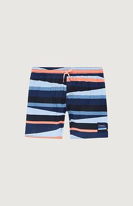 Horizon Swim Shorts