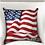 Thumbnail: USA Throw Pillow