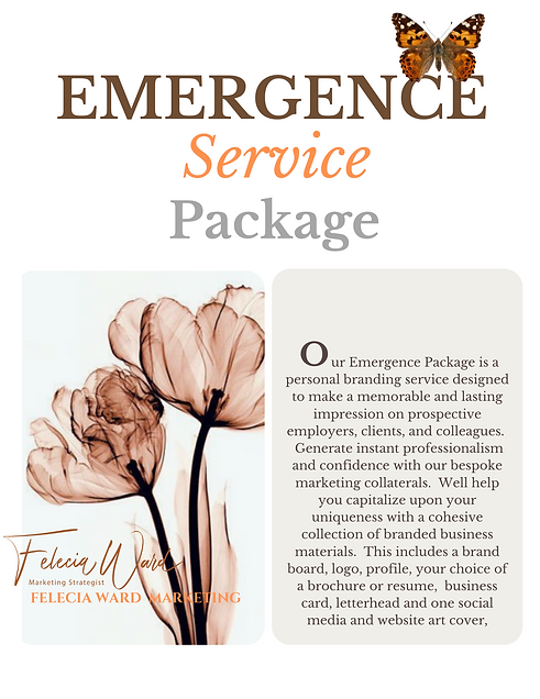 FWM Website EMERGENCE Package.png