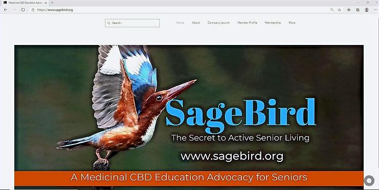 SageBird%2520Website%2520Page_edited_edi