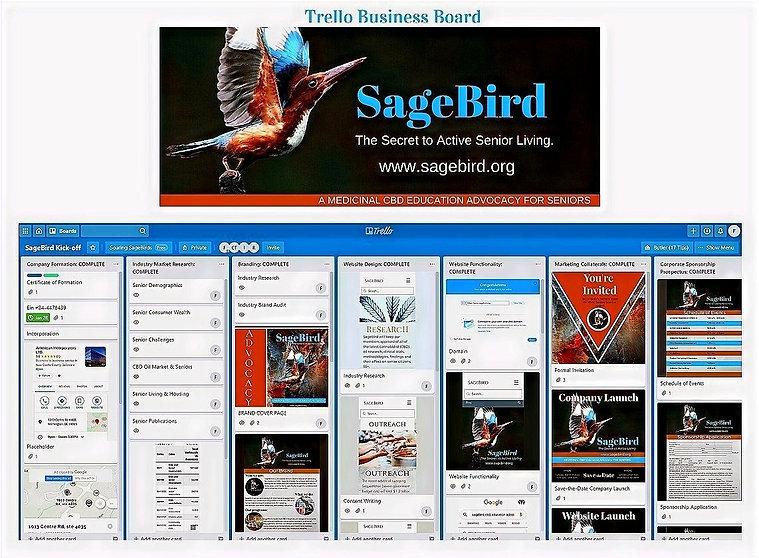 SageBird%25252520Brand%25252520Assets%25