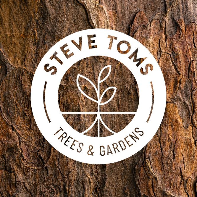 London Row Studio - Steve Toms Trees & G
