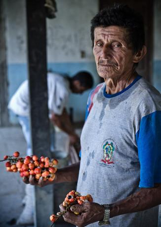 Produtor de guaraná em Maués.