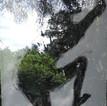 Hom-arbre.jpg