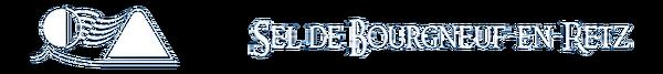 bando-logo-blanc.png