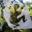 hom-feuilles.jpg