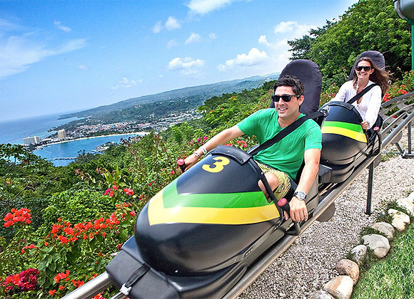 MONTEGO BAY TO MYSTIC MOUNTAIN TRANOPY PRIVATE TOUR