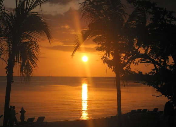 Negril Flava Private Highlight Tour FROM MONTEGO BAY
