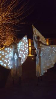 Trampolieri bianchi con ali luminose (trampolieri farfalla o farfalle luminose)