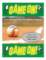 Arm Program flyer.jpg