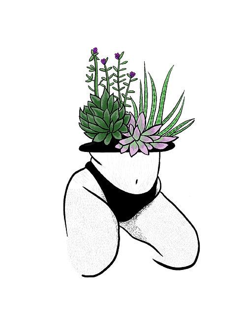Lady Succulent