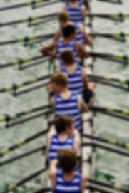 row-4476112_1920.jpg
