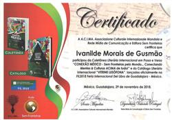 """Participação na Coletânea Literária Internacional em Prosa e Verso """"CONEXÃO MÉXICO – Sem Fronteiras"""