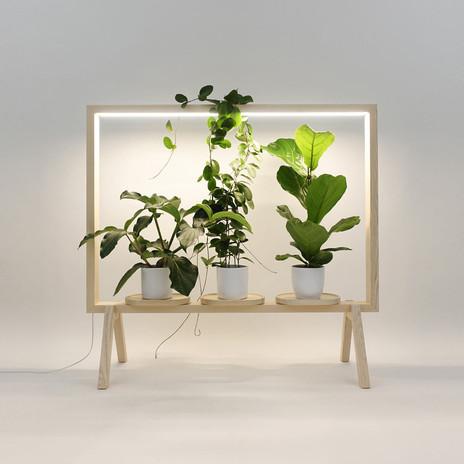 Horta em apartamento, sem se preocupar com o sol - conheça a Grow Light
