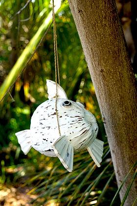 Poisson noix de coco