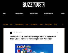 Buzz Music review.png