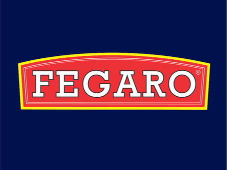 Olá, eu sou a Fegaro!