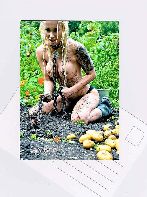 Postkarte Nr.2 sm sexy nude fetish women Fotografie von John Bale 2016