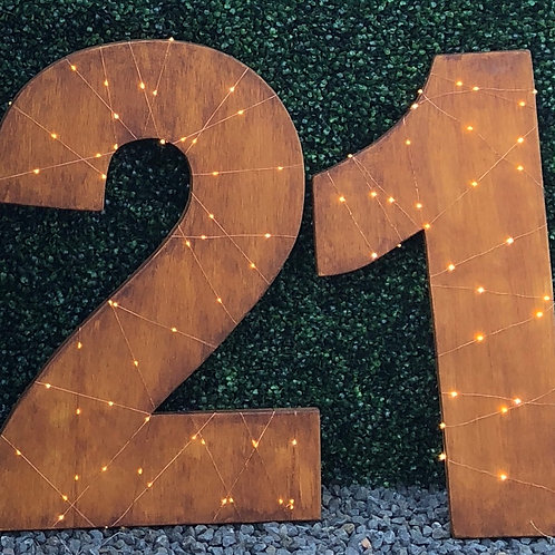 Rustic Twinkle Light 21 Numbers