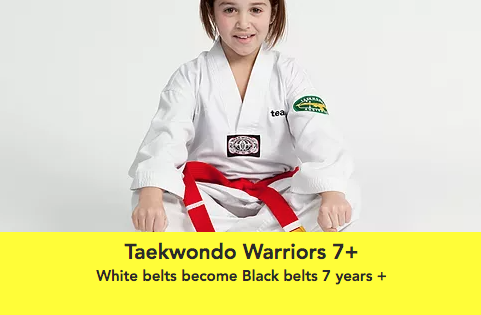 Taekwondo Warriors 7+.png
