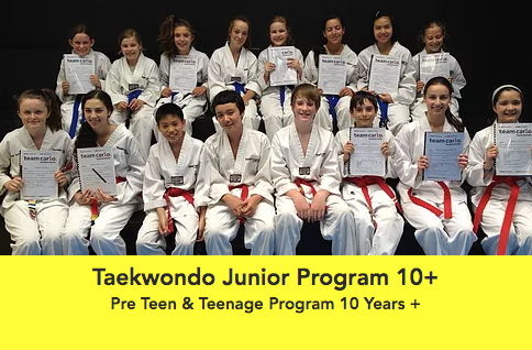Taekwondo Junior.png