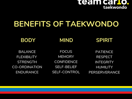 When you invest in Team Carlo Taekwondo… what are your fees really paying for?