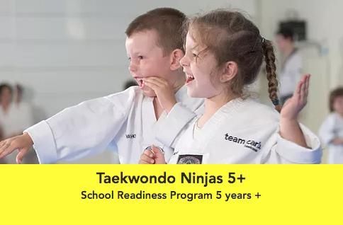 Taekwondo 5+.png