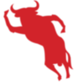 RED BULL ICON.png
