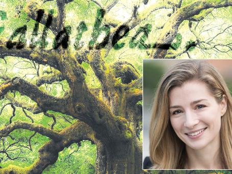 About GALLATHEA | Lauren Robertson