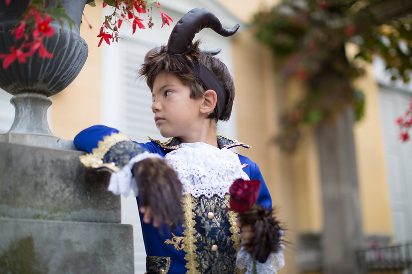 Deluxe Beast costume for boy inspired by disney Beauty and the Beast