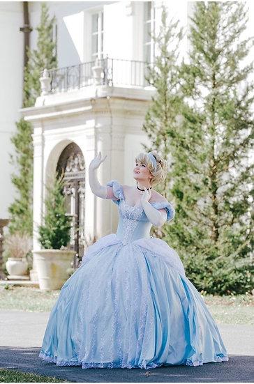 Cinderella dress for Adult