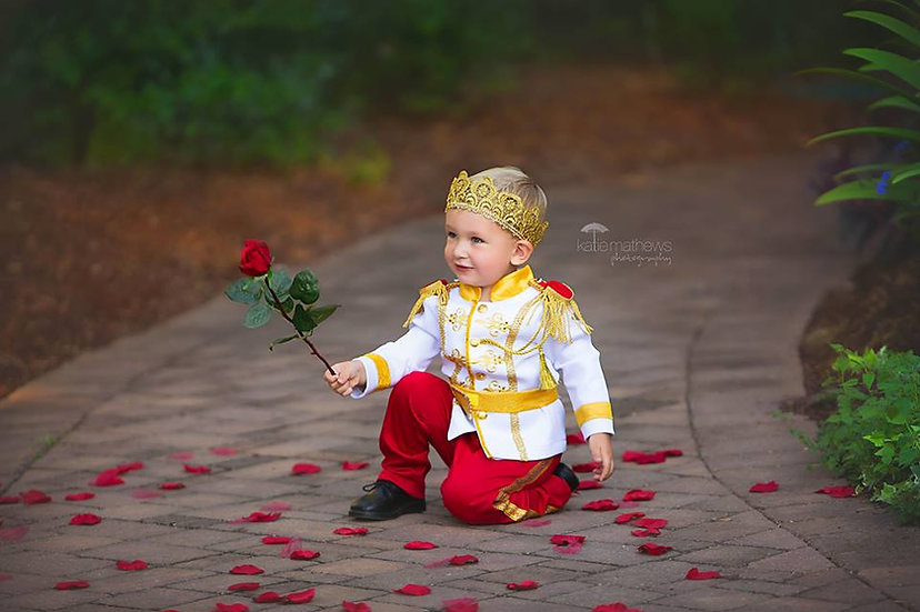 Prince Charming costume in red colour