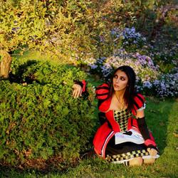 Alice in Wonderland Queen of Hearts cost