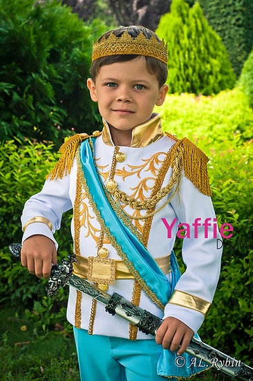 Prince Charming costume in baby blue colour