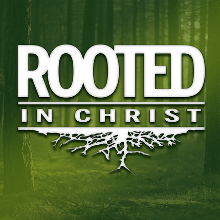 Rooted in Christ: Truth Group Image