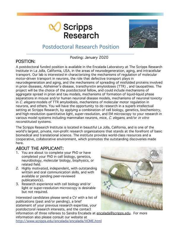 Postdoctoral Research Position_JANUARY 2