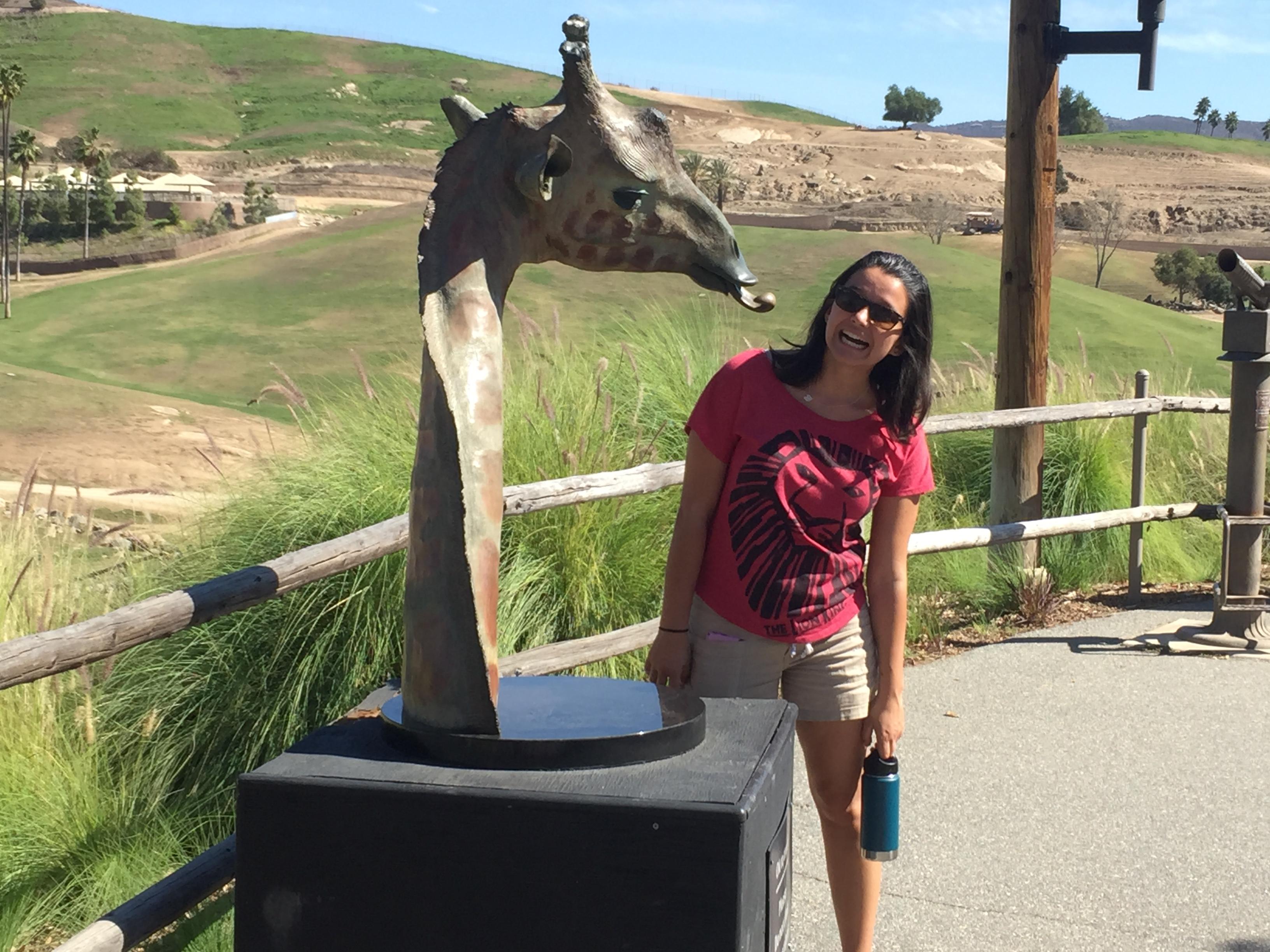 Belle & Mr. Giraffe