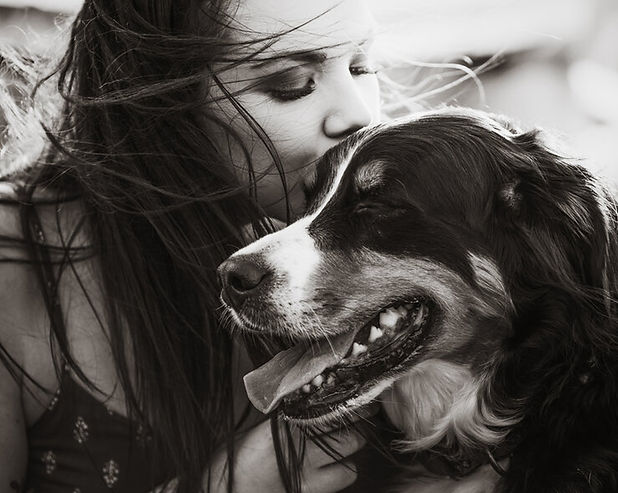 tierfotograf-magdeburg-hundefotograf mit