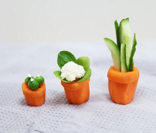 Veggie Succulents