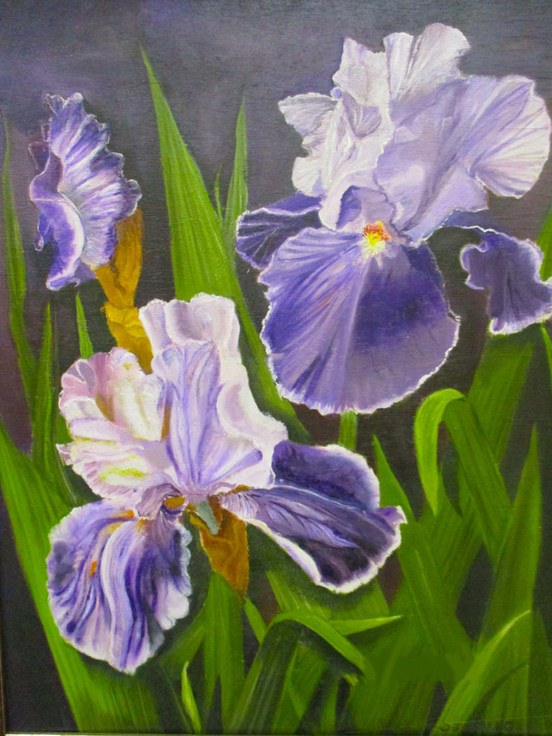 #43_Dorothy_Lang__Patch_of_Purple__Oil_C