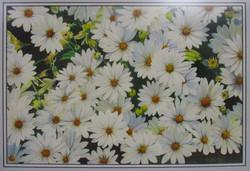"#19_Merit_AllanIzatt_""SummerBloom""_Watercolor_#55"