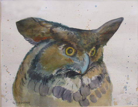 #5_Kathy_Worcester__Owl__Watercolor_Some