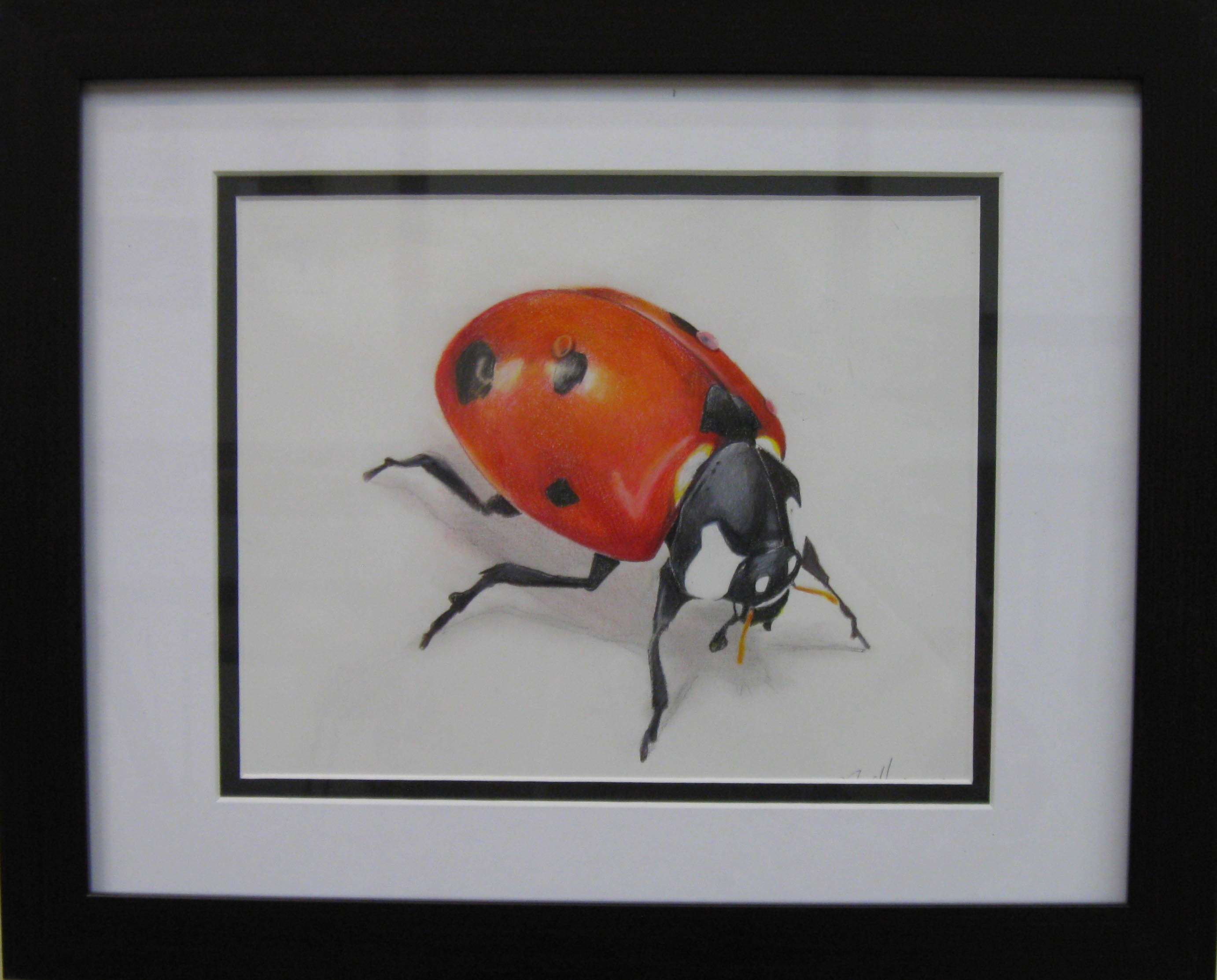 _16 Merit JoshuaMiller _LuckyLadyBug_ ColoredPencil