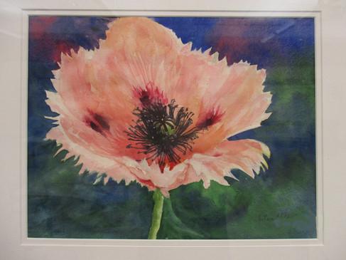 #9_Eileen_Hodge__A_Garden_Favorite__Wate