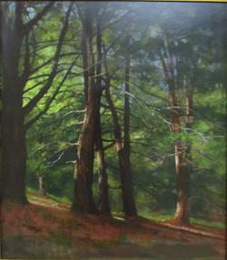 """#7 Oil 1st JoAnnDenehy """"Pine Hollow"""" #11"""
