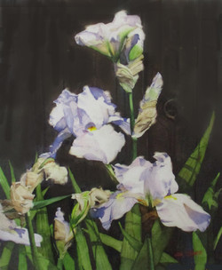 "#9_Watercolor_1st_JohnTomasetti_""Iris_Transitions""_#42"