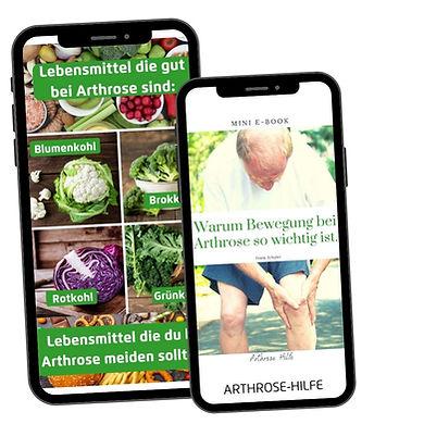 Ernähung bei Arthrose