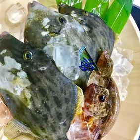 真鯛料理屋 チャリコ_180612_0001.jpg