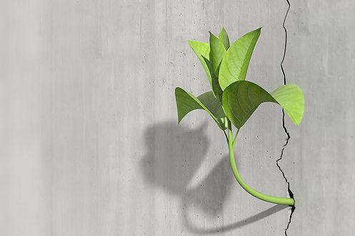 we-thrive.jpg